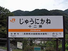 ����jr������������������